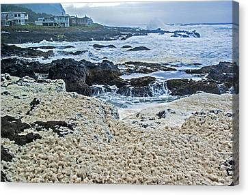 Canvas Print featuring the photograph Pacific Gift by Dale Stillman