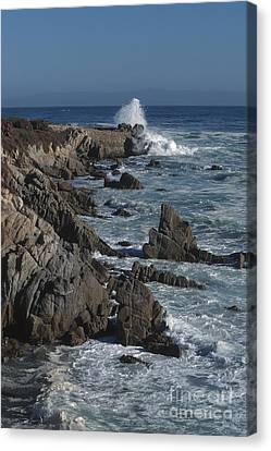 Canvas Print featuring the photograph Pacific Grove Seascape by Stan and Anne Foster