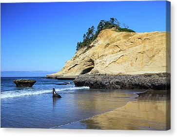 Canvas Print featuring the photograph Pacific Morning by David Chandler