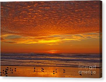Pacific On Fire Canvas Print by Tim Moore