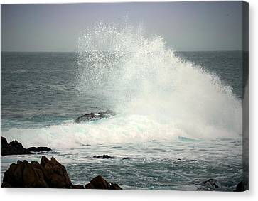 Pacific Splash Canvas Print