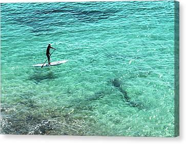 Paddle The Aqua Sea Canvas Print