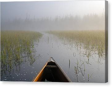 Paddling Into The Fog Canvas Print by Larry Ricker