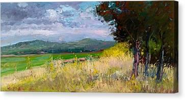 Paesaggio Toscano Canvas Print by Biagio Chiesi