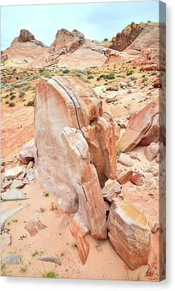 Canvas Print featuring the photograph Pages Of Stone In Valley Of Fire by Ray Mathis