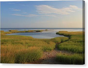 Paines Creek Marsh And Cape Cod Bay Canvas Print