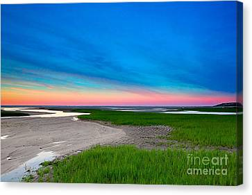 Paines Creek Sunset Cape Cod Canvas Print by Matt Suess