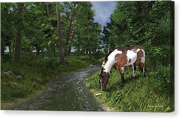 Paint Horse By The Forest Stream Canvas Print by Jayne Wilson