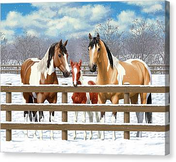 Chestnut Horse Canvas Print - Paint Horses In Winter Corral by Crista Forest