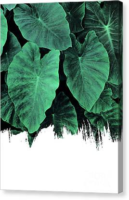 Paint On Jungle Canvas Print