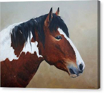 Paint Stallion Canvas Print