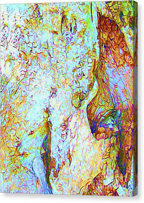 Surf Lifestyle Canvas Print - Painted Bark II by Chris Andruskiewicz