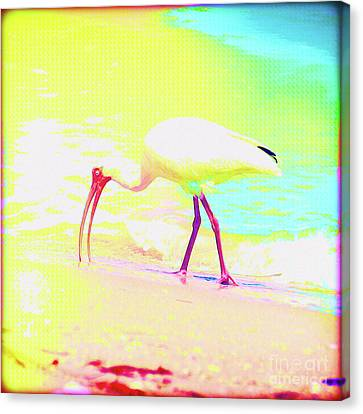 Surf Lifestyle Canvas Print - Painted Bird Breakfast by Chris Andruskiewicz