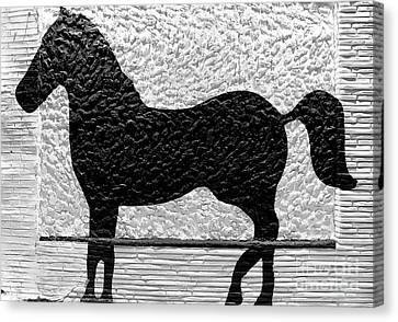 Canvas Print featuring the photograph Painted Black - Stone Pony by Colleen Kammerer