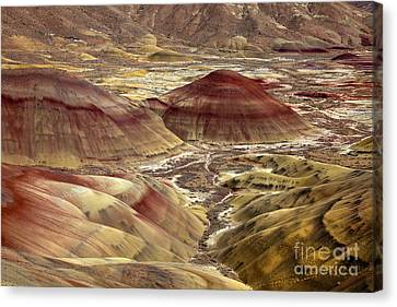 Painted By Nature Canvas Print by Mike  Dawson
