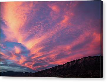 painted by Sun Canvas Print