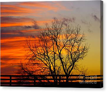 Painted By The Sun Canvas Print