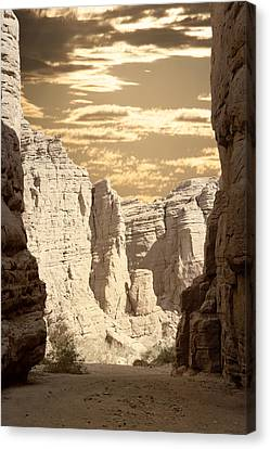 Painted Canyon Trail Canvas Print by Linda Dunn