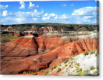 Painted Desert Canvas Print by Barry Shaffer