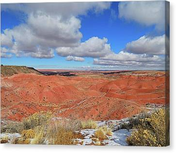 Painted Desert Canvas Print by Connor Beekman