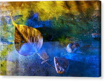 Painted Dreams Canvas Print