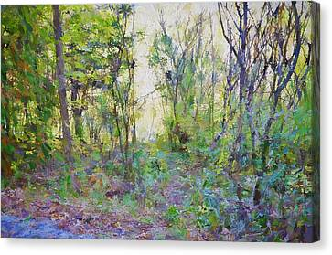 Painted Forrest Canvas Print