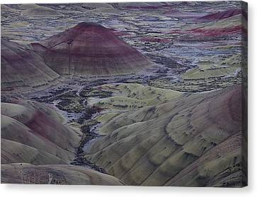Painted Hills 2 Canvas Print