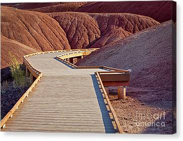Painted Hills Boardwalk Canvas Print by Jerry Fornarotto
