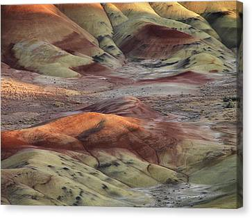 Painted Hills Color And Texture Canvas Print by Leland D Howard