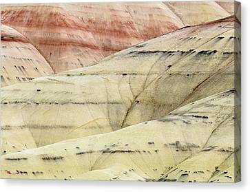 Canvas Print featuring the photograph Painted Hills Ridge by Greg Nyquist