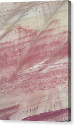 Canvas Print featuring the photograph Painted Hills Textures 1 by Leland D Howard