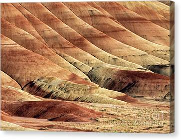 Painted Hills Textures Canvas Print by Jerry Fornarotto