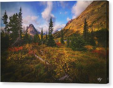 Canvas Print - Painted Morning by Peter Coskun