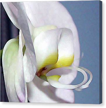 Canvas Print featuring the digital art Painted Orchid by Ellen Barron O'Reilly