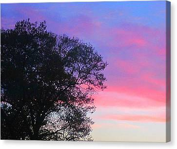 Canvas Print - Painted Pink Sky by Guy Ricketts