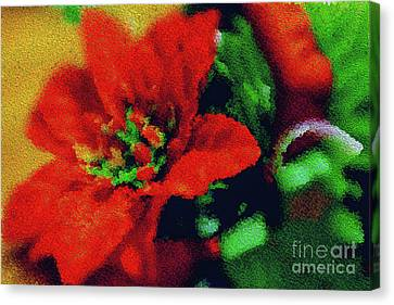 Painted Poinsettia Canvas Print by Sandy Moulder