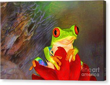 Painted Red Eyed Tree Frog Canvas Print