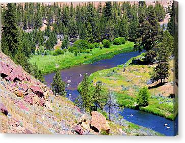 Canvas Print featuring the photograph Painted River by Jonny D