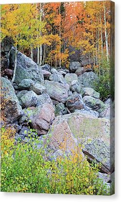 Canvas Print featuring the photograph Painted Rocks by David Chandler