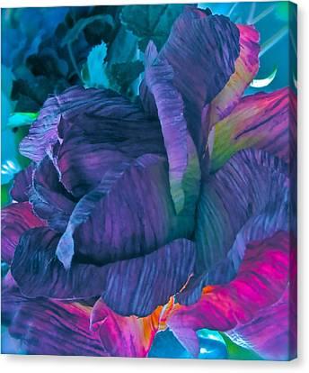 Painted Silk Canvas Print by Gwyn Newcombe