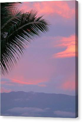 Canvas Print featuring the photograph Painted Sky by Debbie Karnes