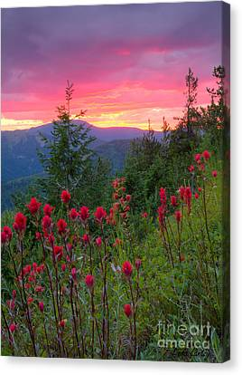 Mountain View Canvas Print - Painted Sky by Idaho Scenic Images Linda Lantzy