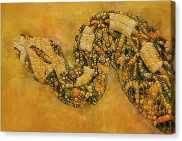 Painted Snake Canvas Print by Jack Zulli