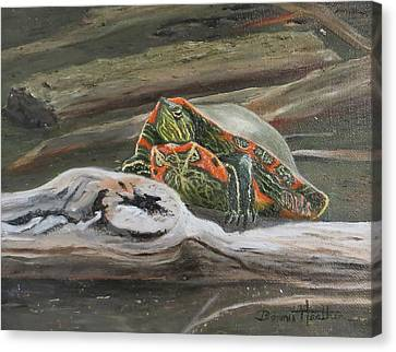 Canvas Print featuring the painting Painted Turtle by Bonnie Heather