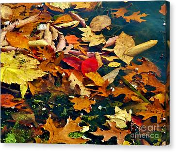 Painted Water          Autumn            Indiana Canvas Print