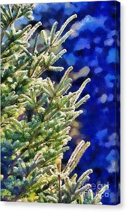 Painting Of Fir Tree Branches Canvas Print