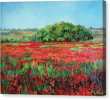 Painting Of Indian Paintbrush In Oklahoma Canvas Print by Cheri Wollenberg