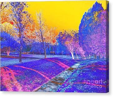 Painting With Shadows Canvas Print by Scott D Van Osdol