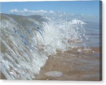 Painting With Waves Canvas Print by Mira Cooke