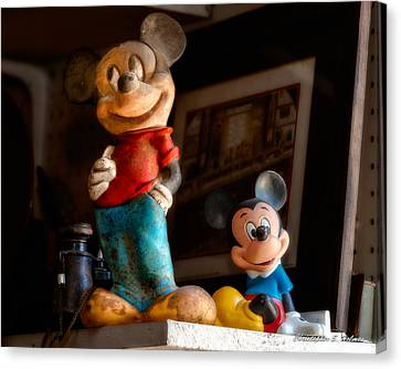 Pair Of Mickies Canvas Print by Christopher Holmes